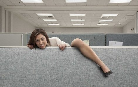 Employee Stuck in Cubicle | Teplis Travel
