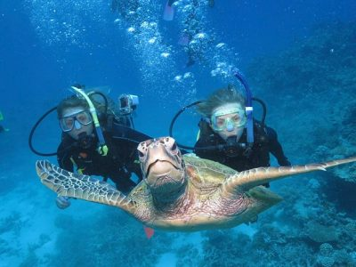 Scuba Divers Swimming with a Turtle | Teplis Travel